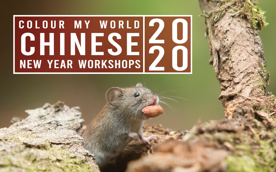 Colour My World Chinese New Year Workshop 2020